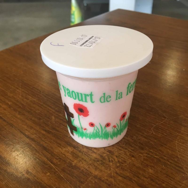 yaourt-chevre enceinte