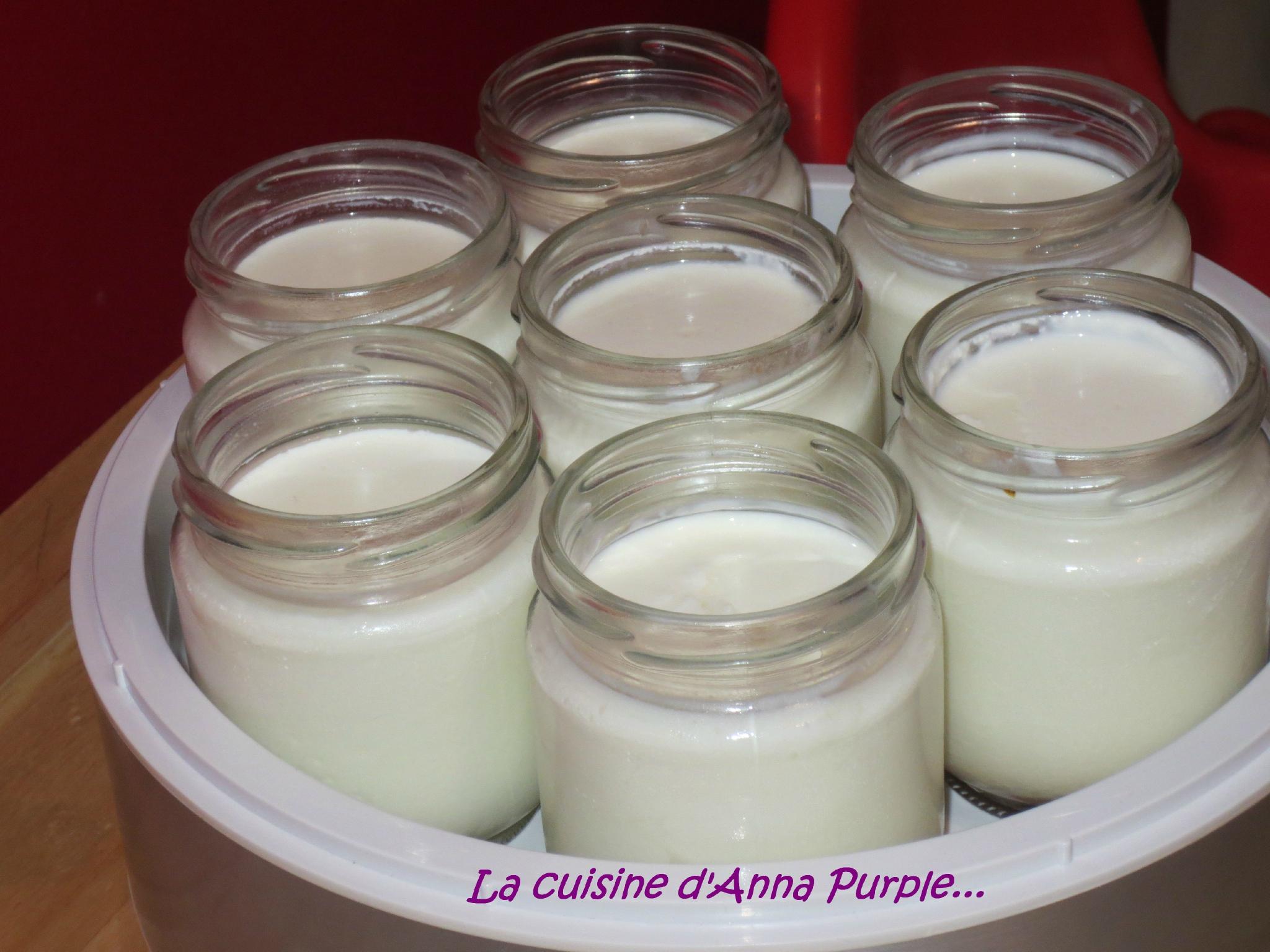 yaourt-fait-maison enceinte