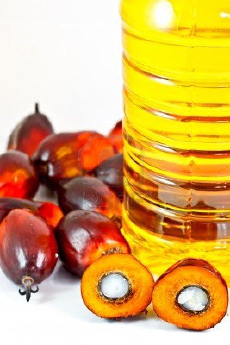 huile-de-palm enceinte