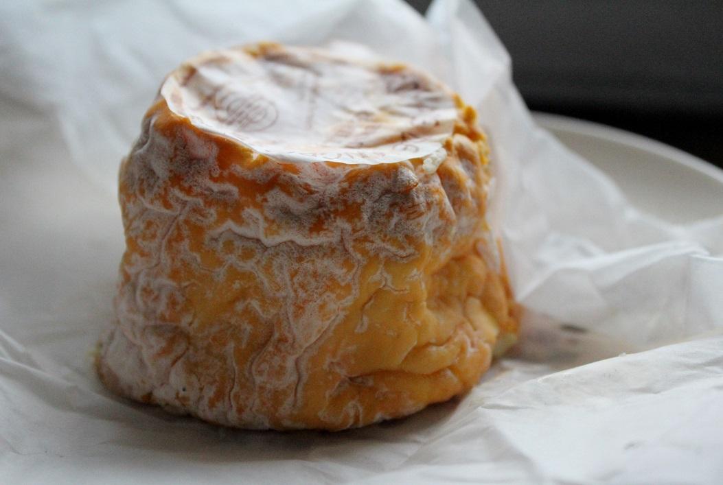 fromage-a-pate-molle-et-croute-mixte enceinte