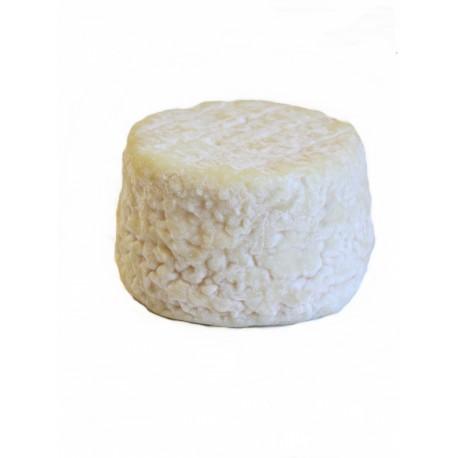 fromage-de-chevre-sec enceinte