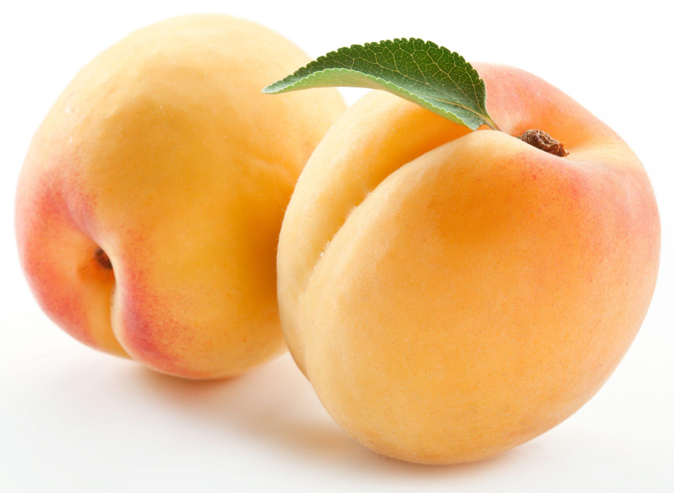 abricot enceinte