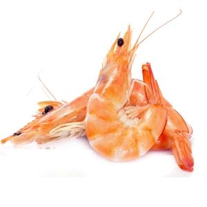 crevettes-roses enceinte