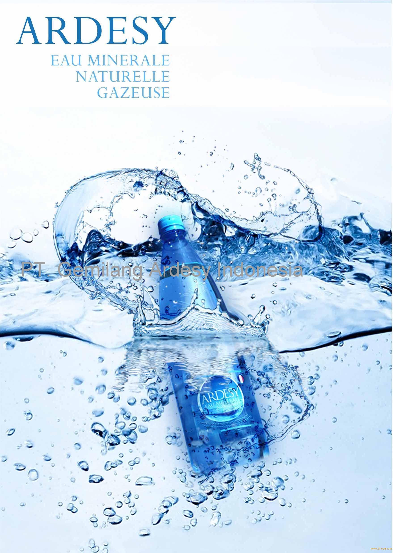 mineral-water-ardesy schwanger