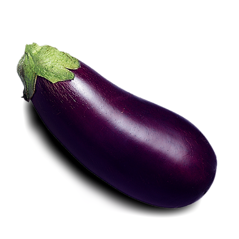 aubergine enceinte