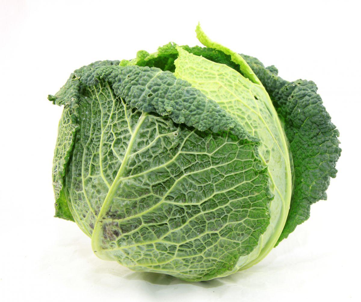 chou-vert enceinte