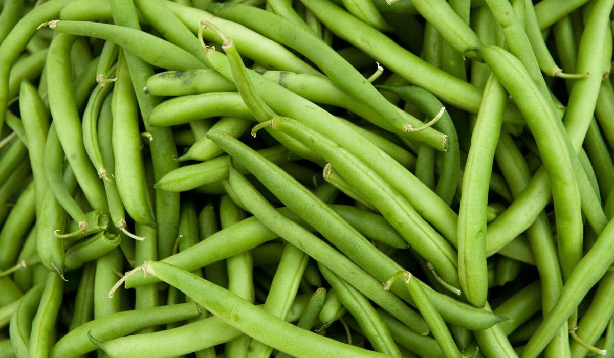 haricot-vert enceinte