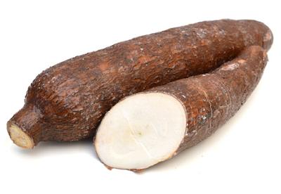 manioc enceinte