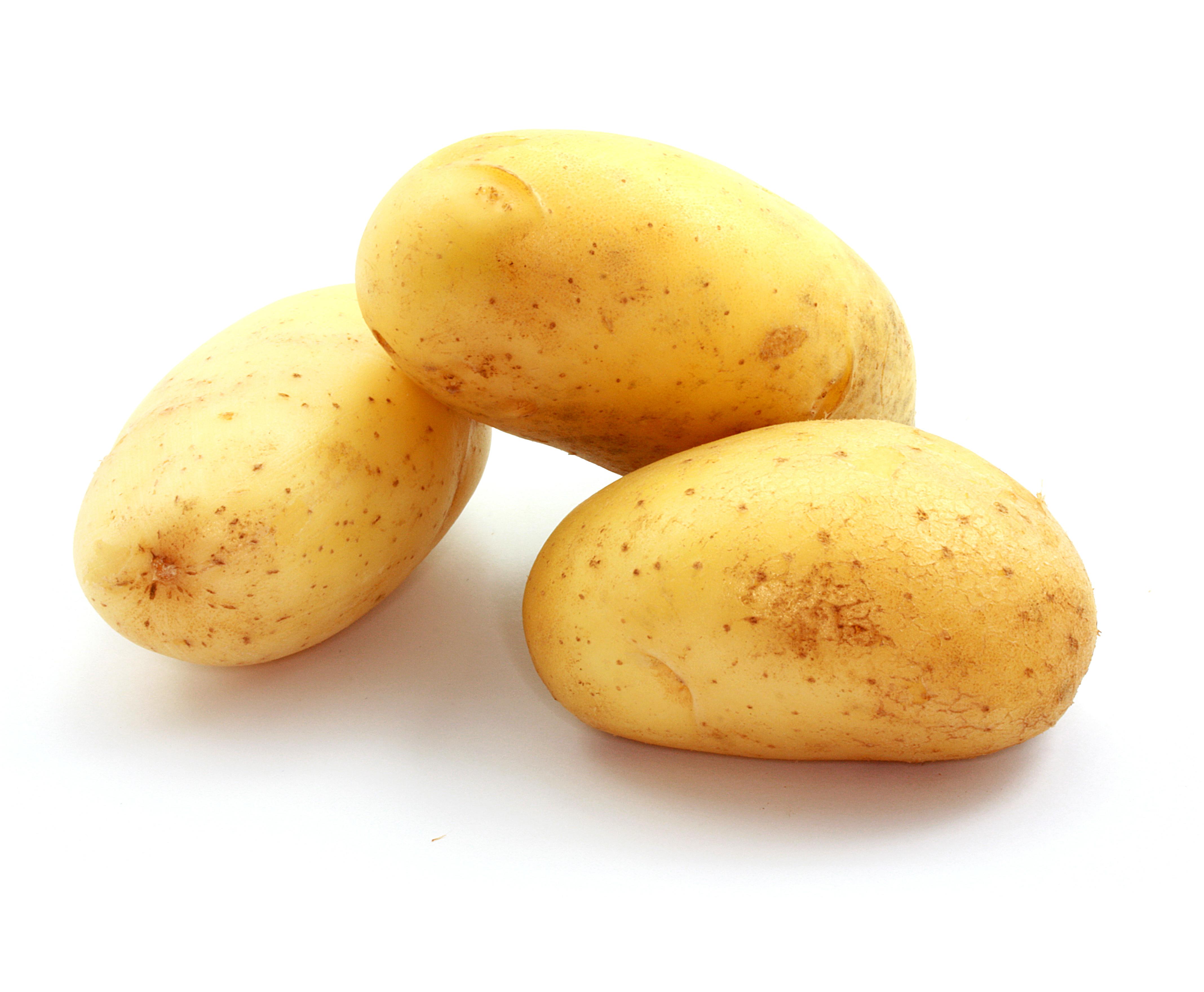 pommes-de-terre enceinte