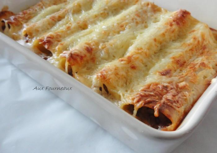 lasagnes-ou-cannelloni-a-la-viande enceinte