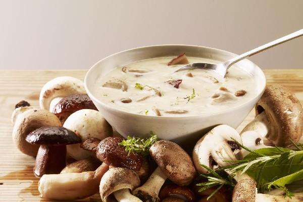 porcini-cream-soup pregnant