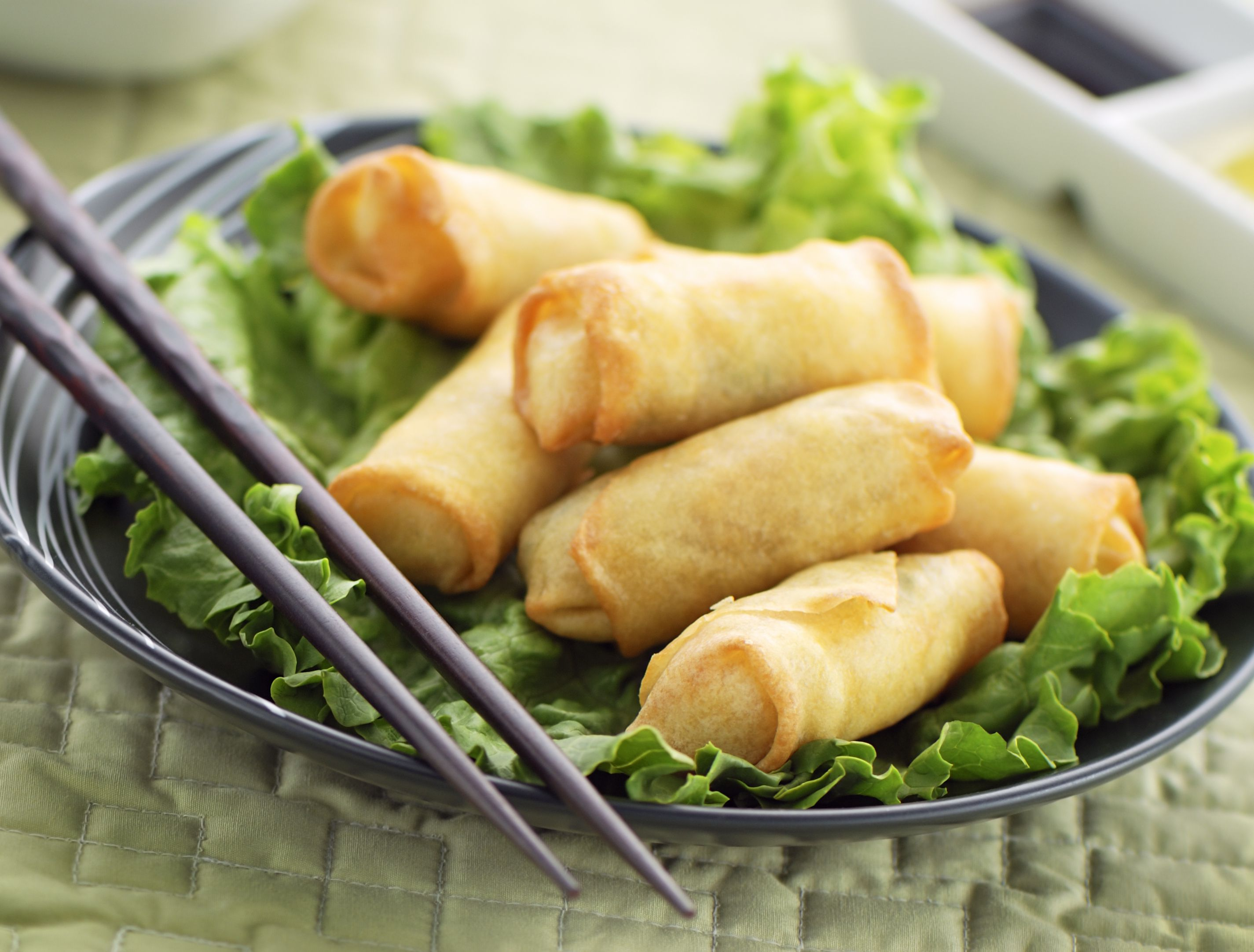 spring-roll pregnant