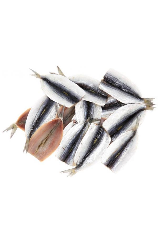 filet-de-sardine enceinte