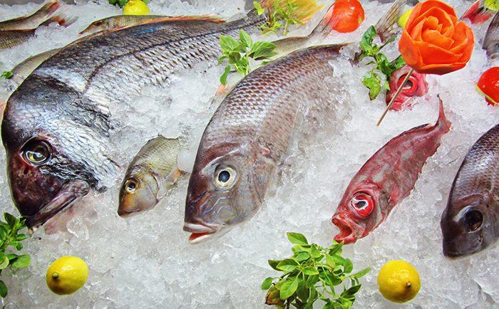 poisson-surgele enceinte