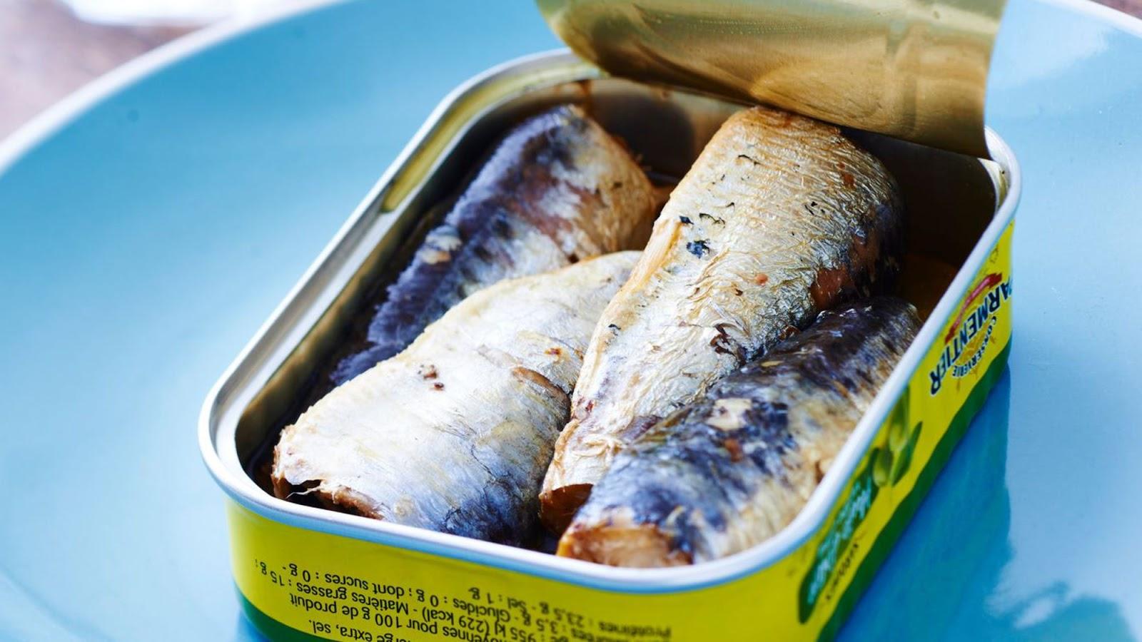 sardine-en-boite enceinte
