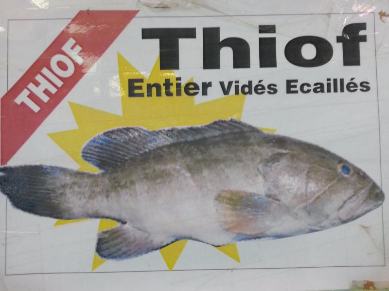 thiof enceinte