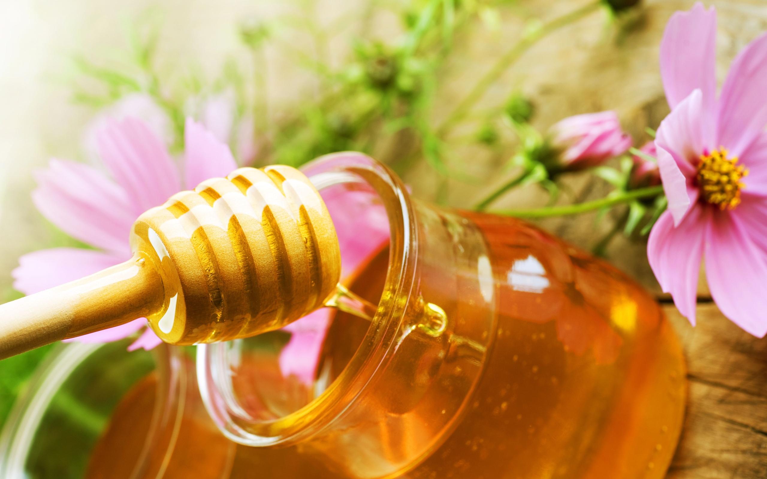 sweet-honey-susigkeit schwanger