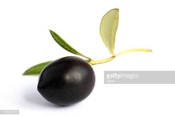 oliva-nera incinta