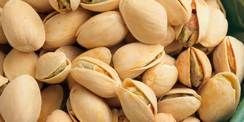 pistachio incinta