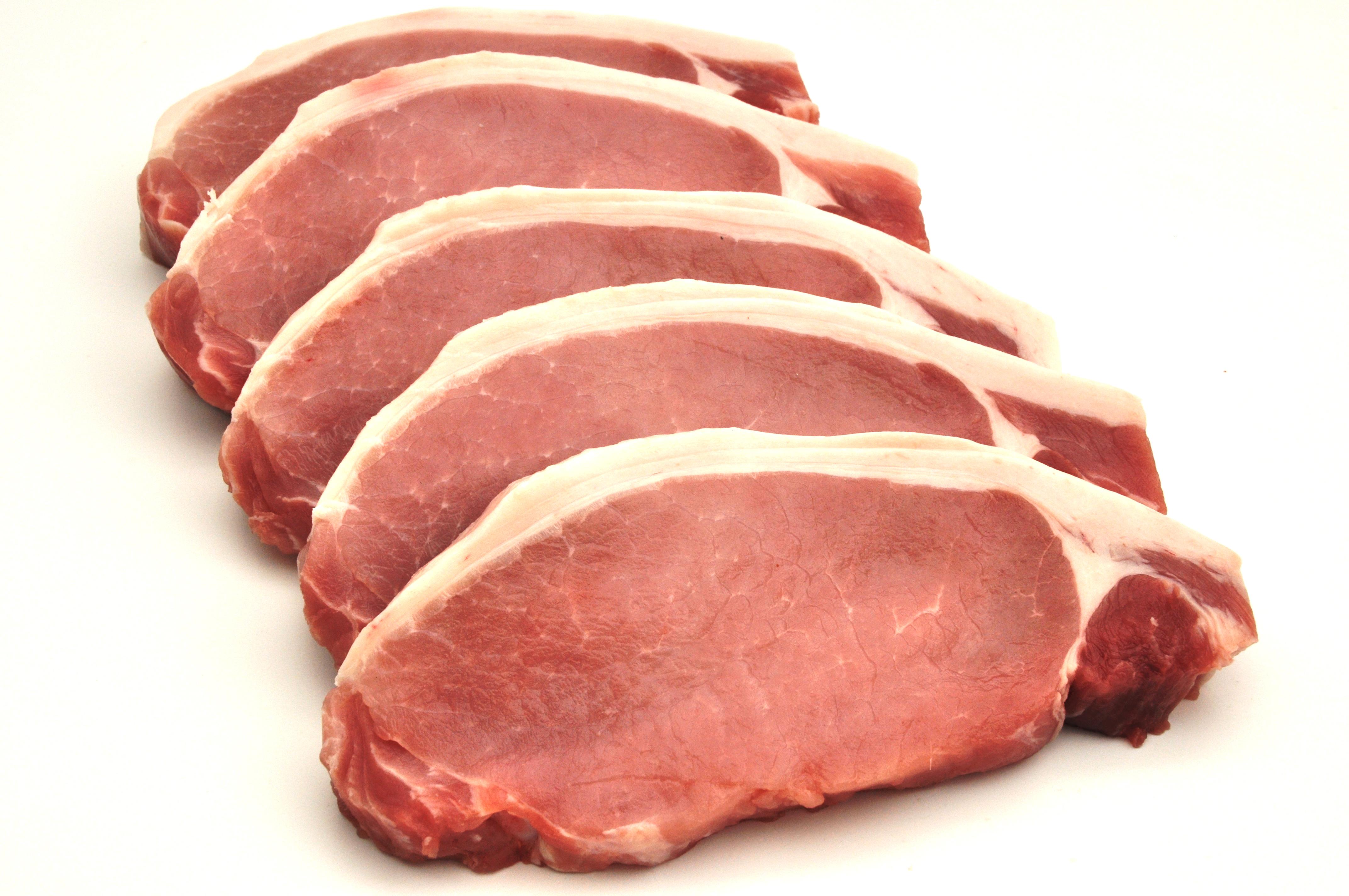porc enceinte